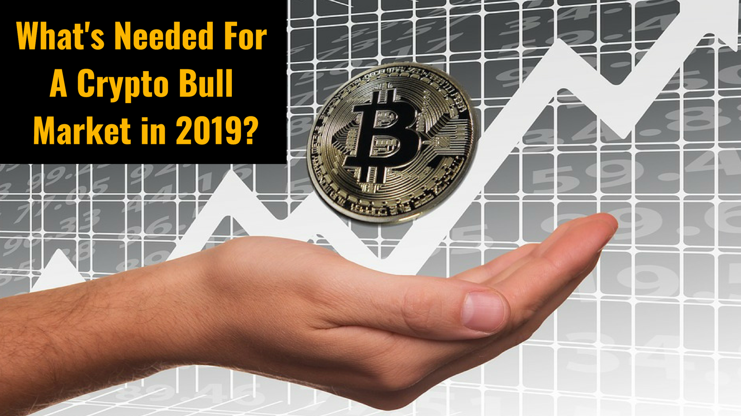 What's needed for a crypto bull market in 2019